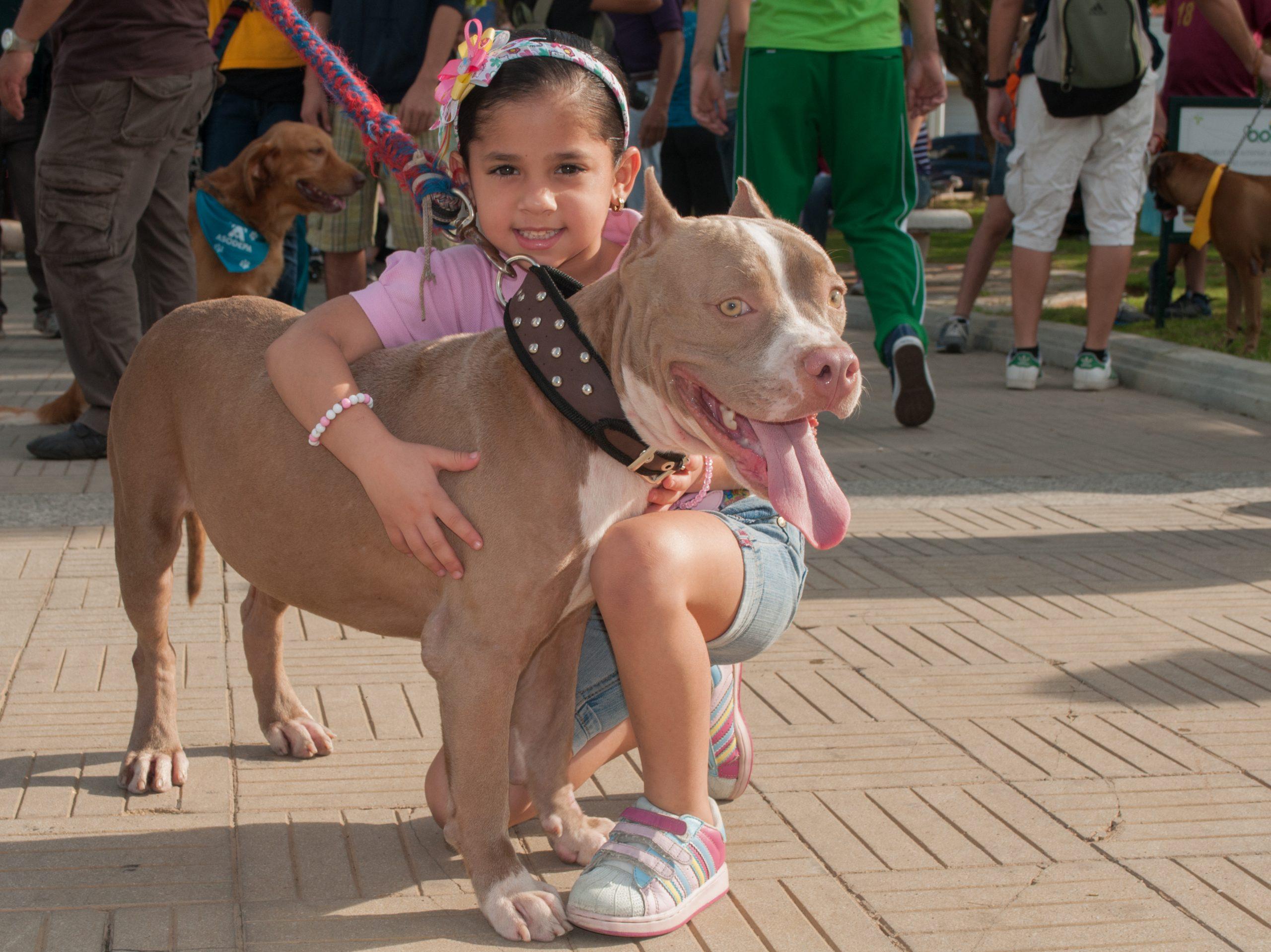 B4 - girl with dog