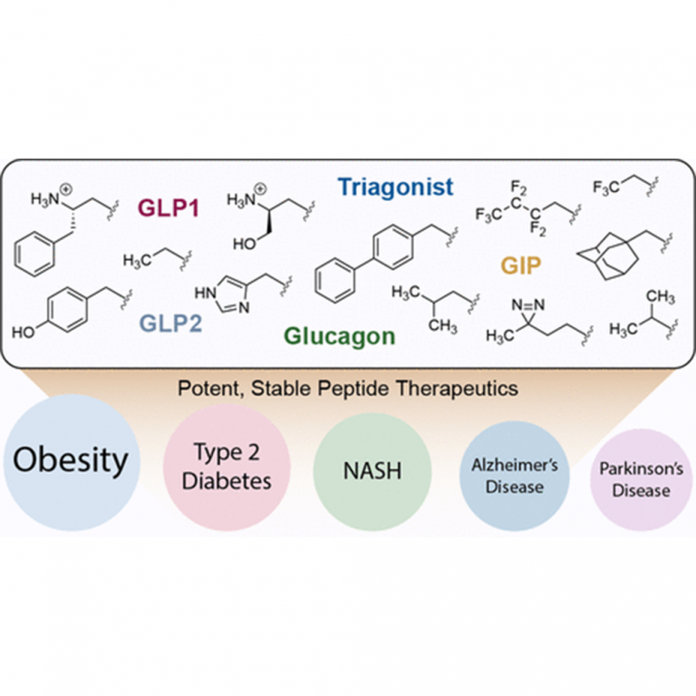 A Non-Perturbative Molecular Grafting Strategy for Stable and Potent Therapeutic Peptide Ligands